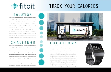Fitbit Layout BUS